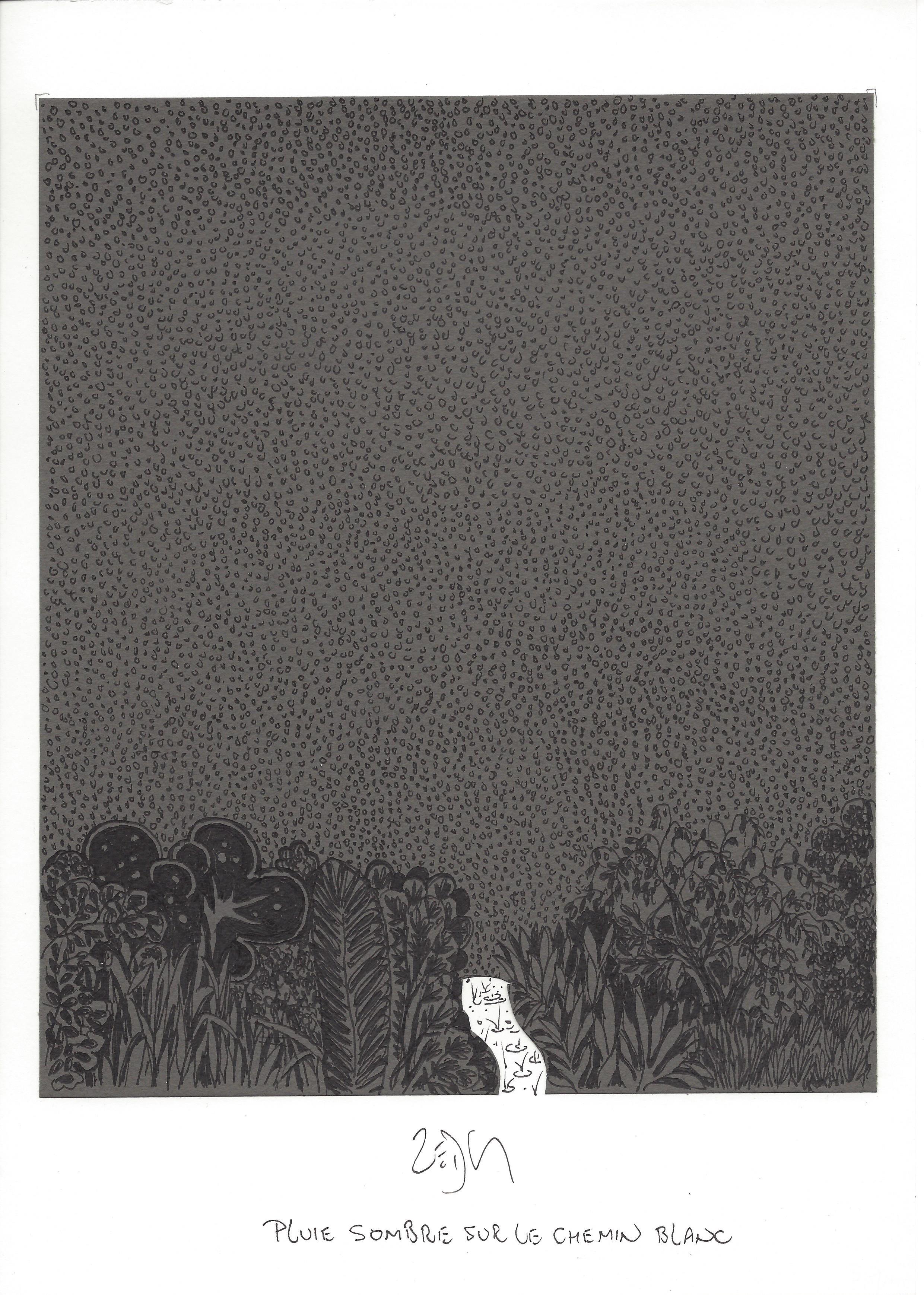 """""""Dark rain on the white path – Pluie sombre sur le chemin blanc"""""""