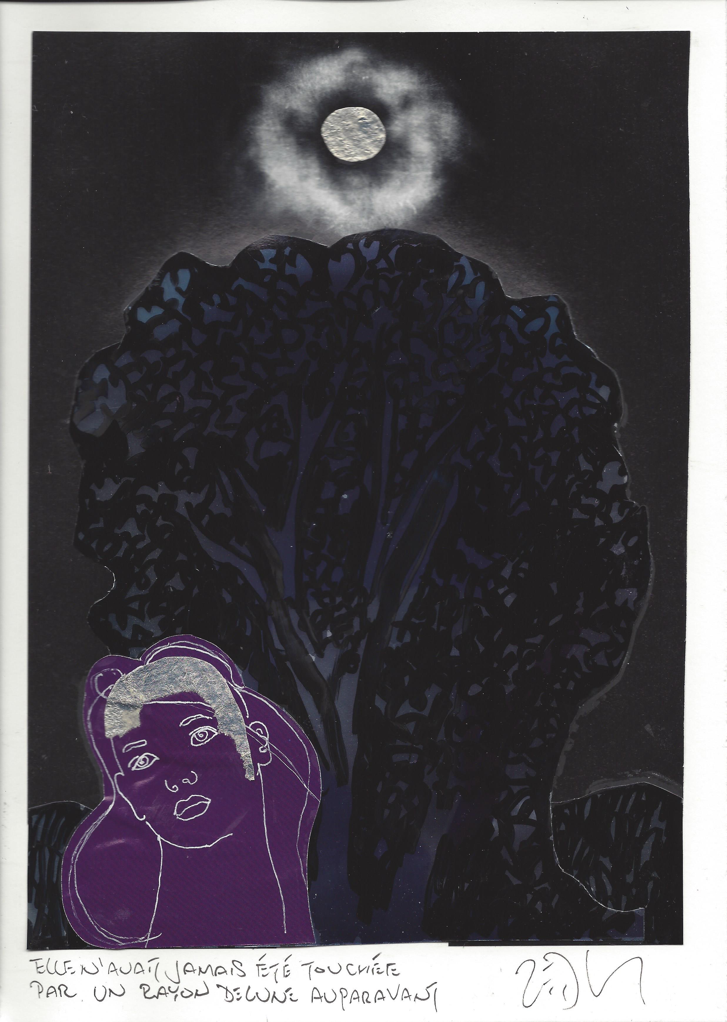 « She had never been touched by a moonbeam before – Elle n'avait jamais été touchée par un rayon de lune auparavant »
