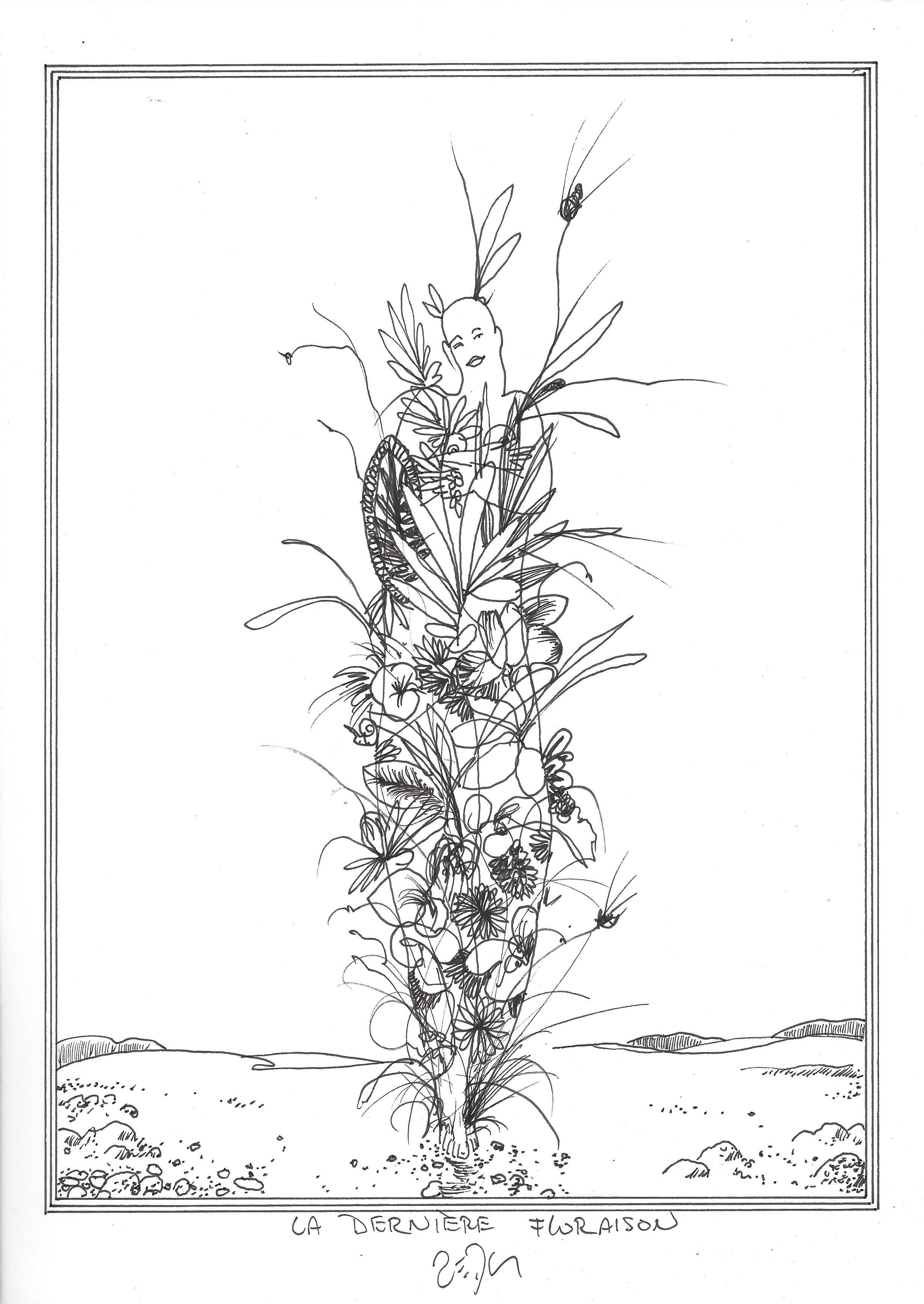« The last flowering – La dernière floraison »