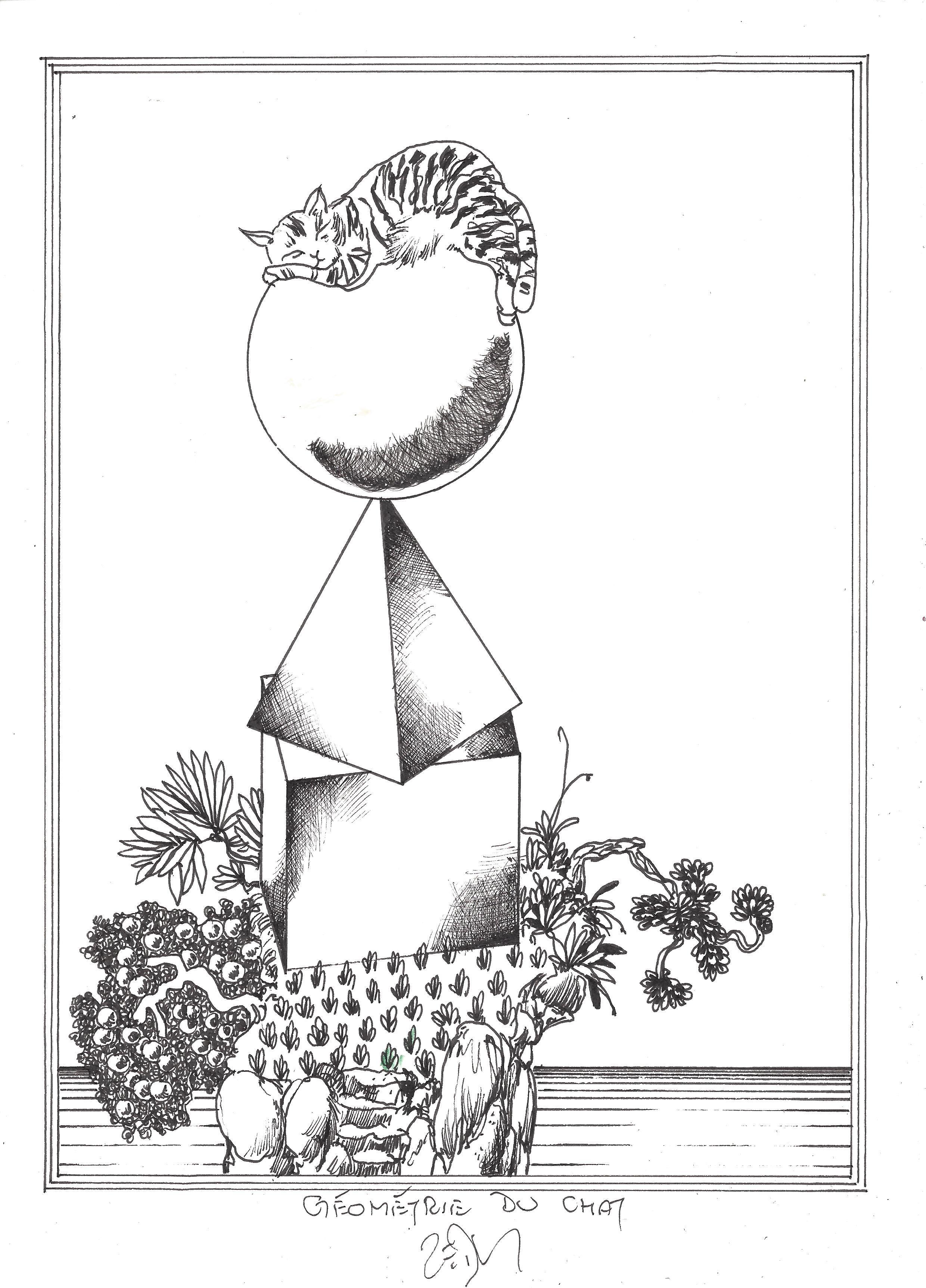 « Cat geometry – Géométrie du chat »