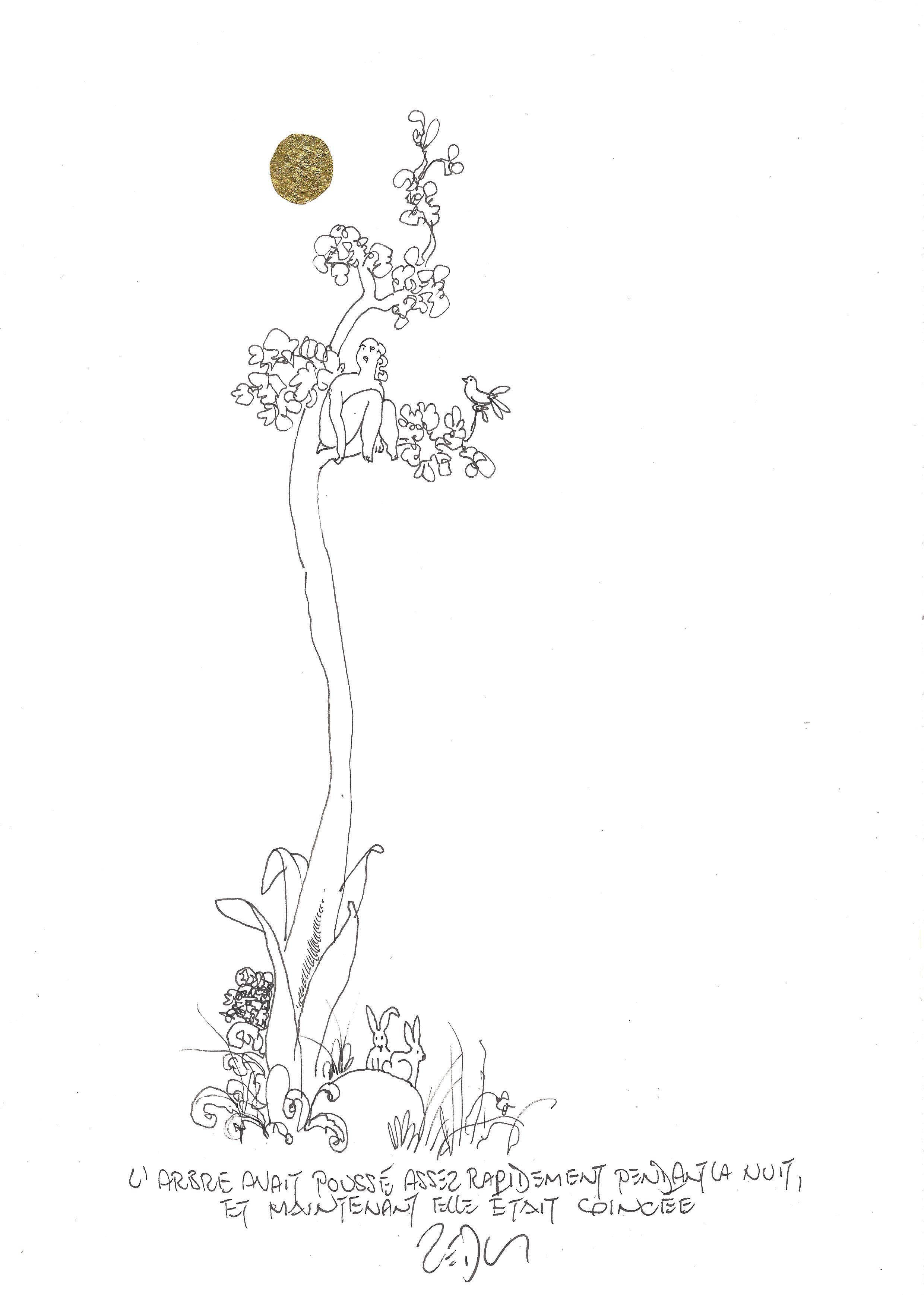 « The tree had grown rather rapidly overnight, and now she was stuck – L'arbre avait poussé assez rapidement pendant la nuit, et maintenant elle était coincée »
